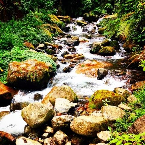Wanderlust Chloe Boquete Trail Rapids