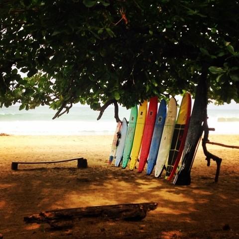 Wanderlust Chloe Puerto Viejo Surf