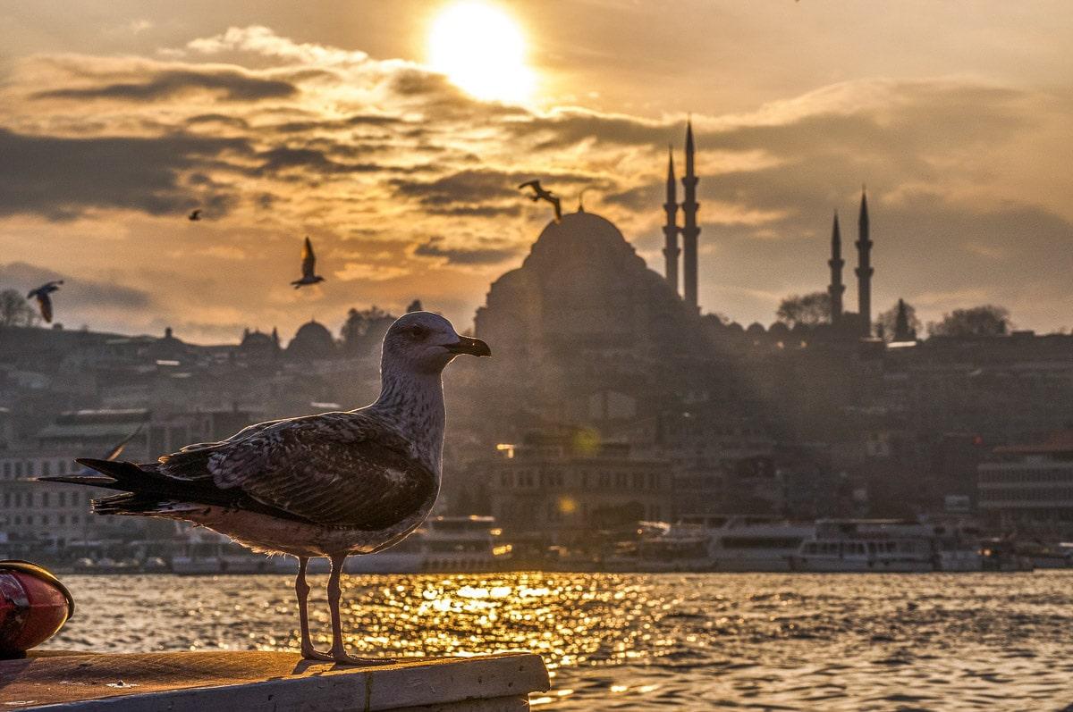 Sunset on The Bosphorus in Istanbul, Turkey