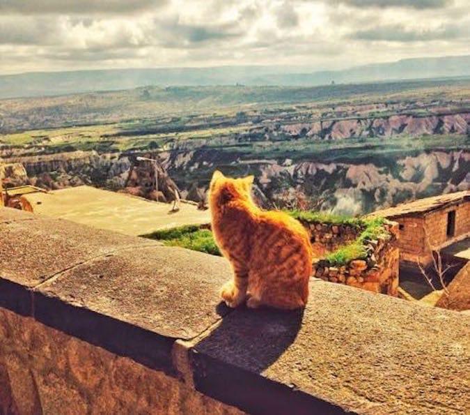 Wanderlust Chloe Kale Konak Cave Hotel Cappadocia feat
