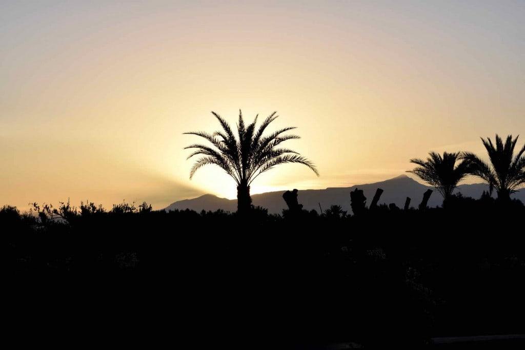 Sunrise at Royal Palm Hotel Marrakech