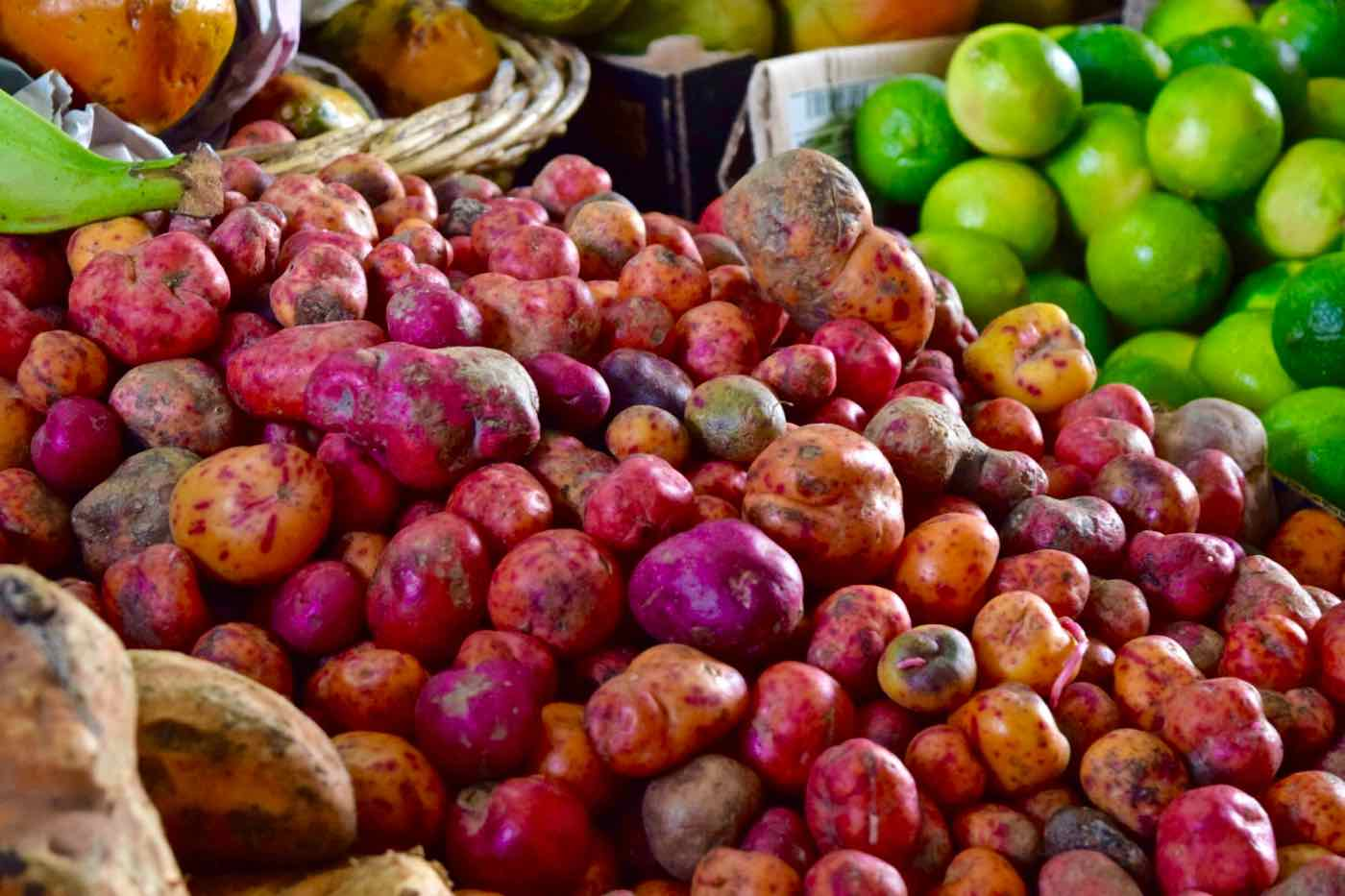 Amazing colourful potatoes in Santiago's Central Markets