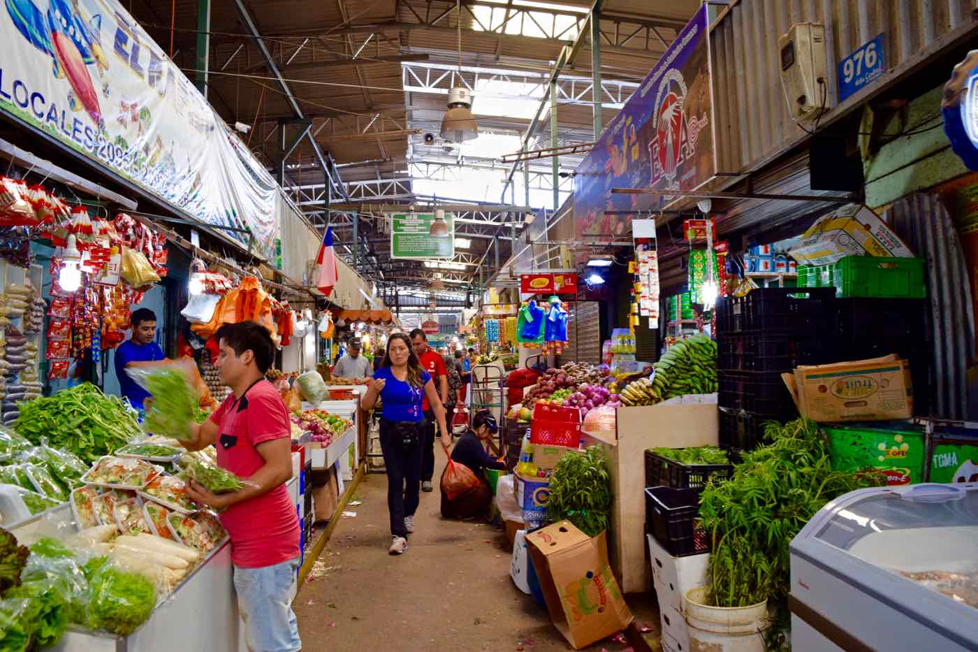 Exploring Santiago's Central Markets with Uncorked Chile