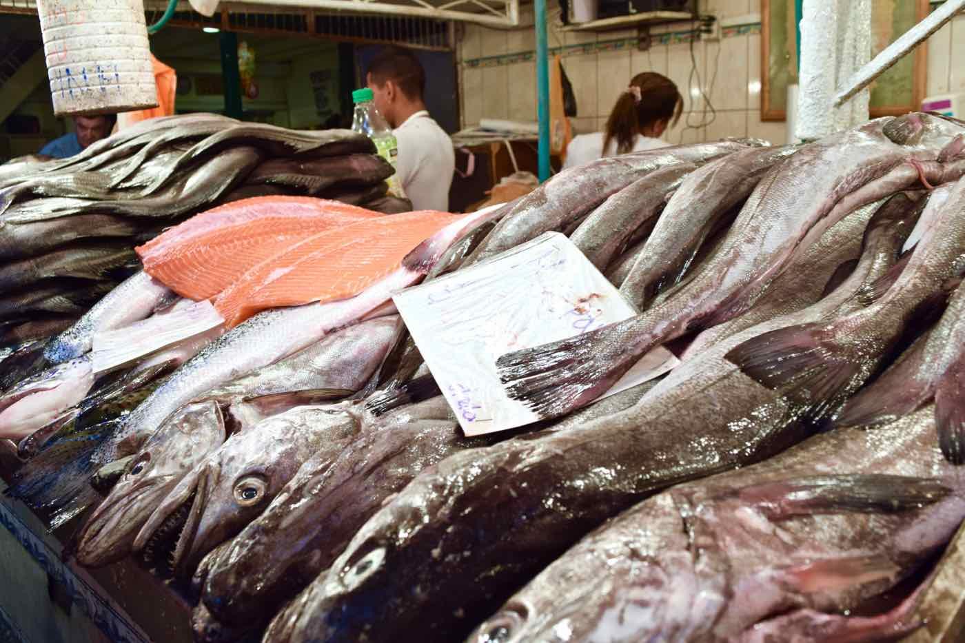 Fish for sale in Mercado Central, Santiago, Chile