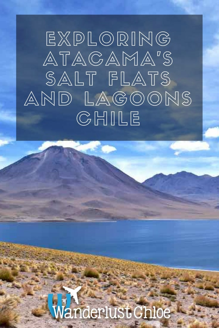 Exploring Atacama's Salt Flats and Altiplanic Lagoons