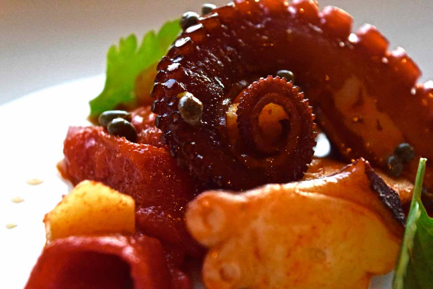 Octopus at Osteria London