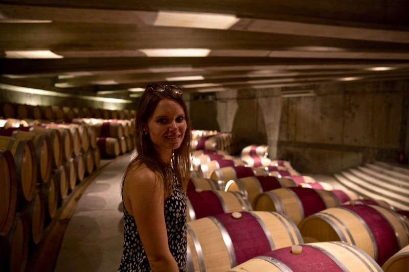 Exploring the barrel room at Vina Montes, Colchagua Valley, Chile