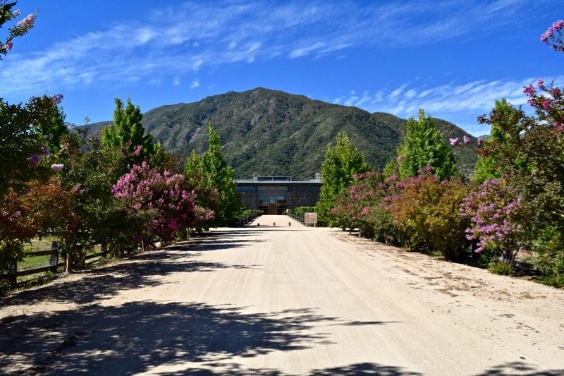Vina Montes, Colchagua Valley, Chile