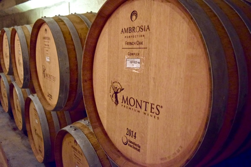 The barrel room at Vina Montes, Colchagua Valley, Chile