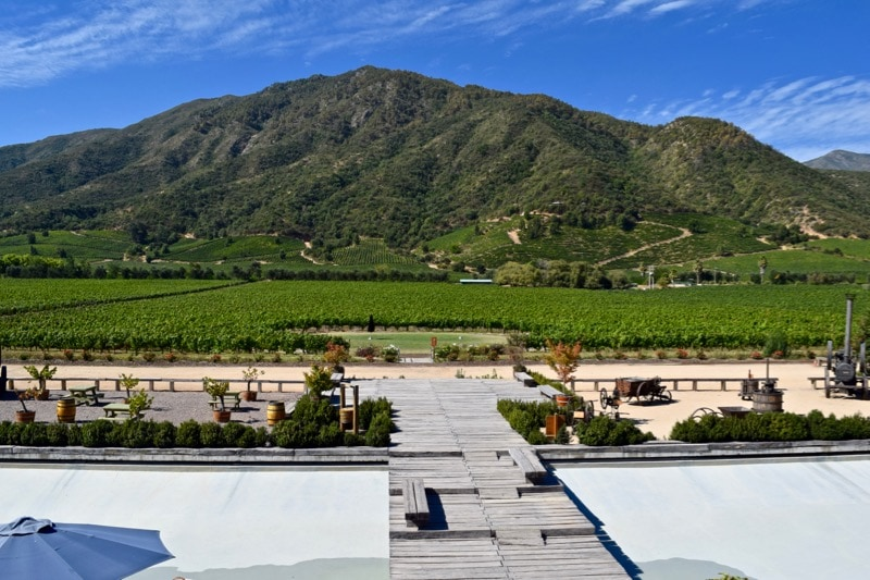 Incredible views from the back of Vina Montes, Colchagua Valley, Chile