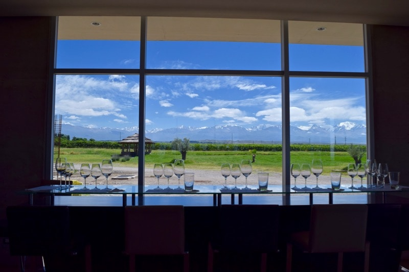 Amazing views from the wine tasting bar at Domaine Bousquet Winery, Uco Valley