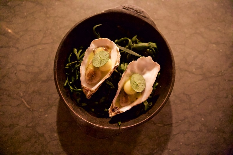 Oysters Flambadou at Ekstedt Michelin star restaurant, Stockholm