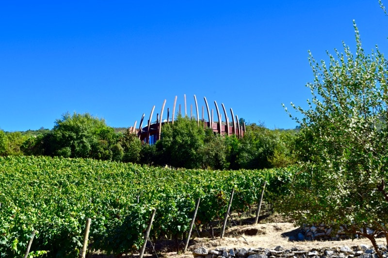 Lapostolle - one of my favourite Colchagua Valley wine tours