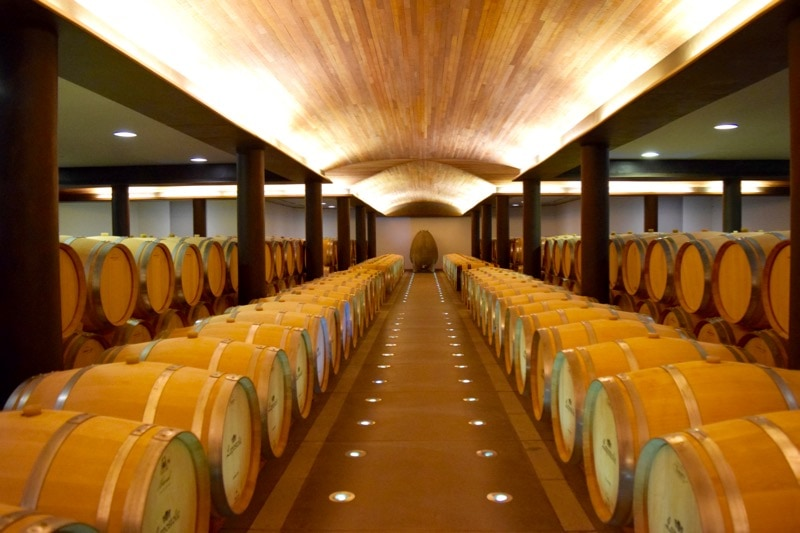 One of the incredible barrel rooms at Lapostolle, Colchagua Valley, Chile