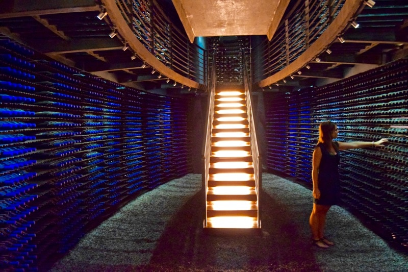 Picking out my favourite wine in Lapostolle's wine cellar (Photo @BackpackerMacca)
