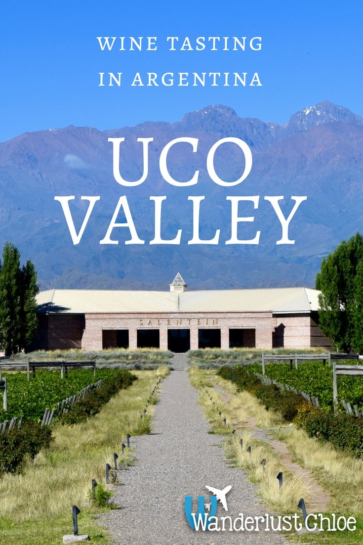 Wine Tasting In Argentina's Uco Valley