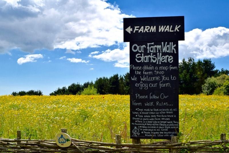 The Garlic Farm, Isle of Wight