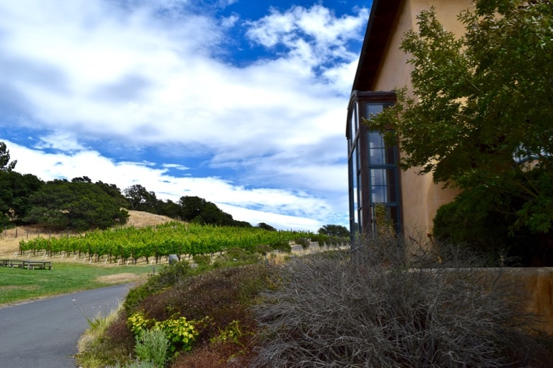 Nicholson Ranch, Sonoma Valley, California