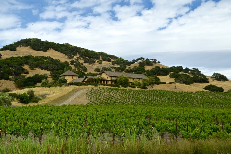 Beautiful views of Nicholson Ranch, Sonoma Valley, California