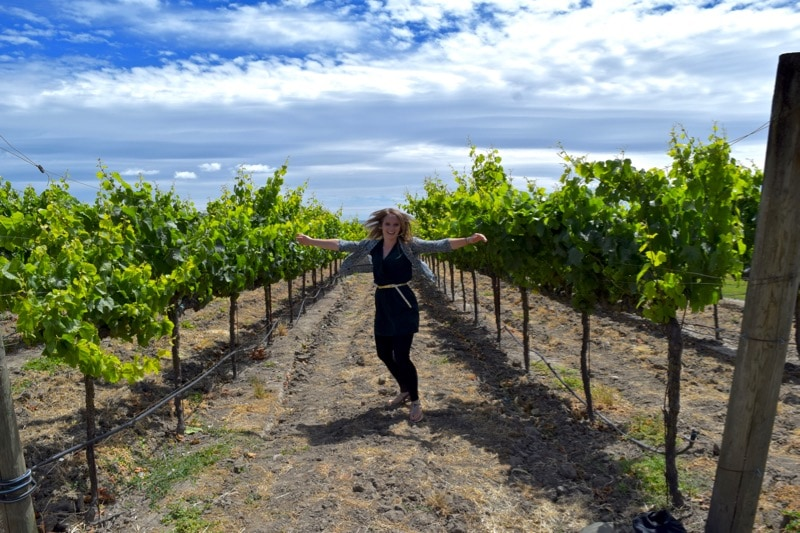 Playing in the vineyards at Larson Family Winery, Sonoma Valley, California
