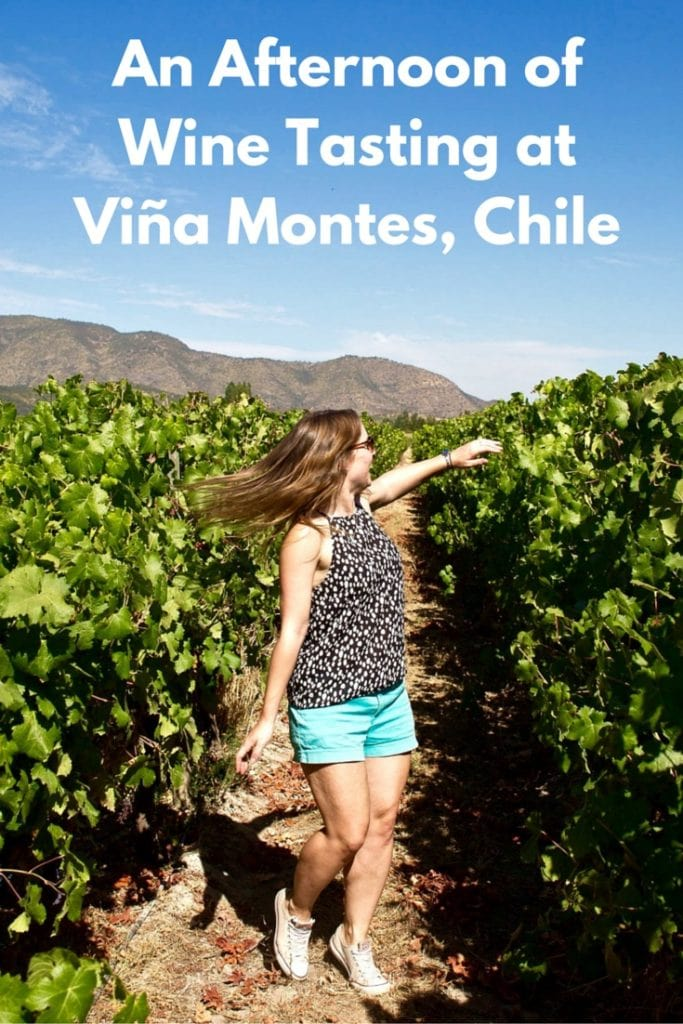 An Afternoon of Wine Tasting at Viña Montes, Chile (PIN)
