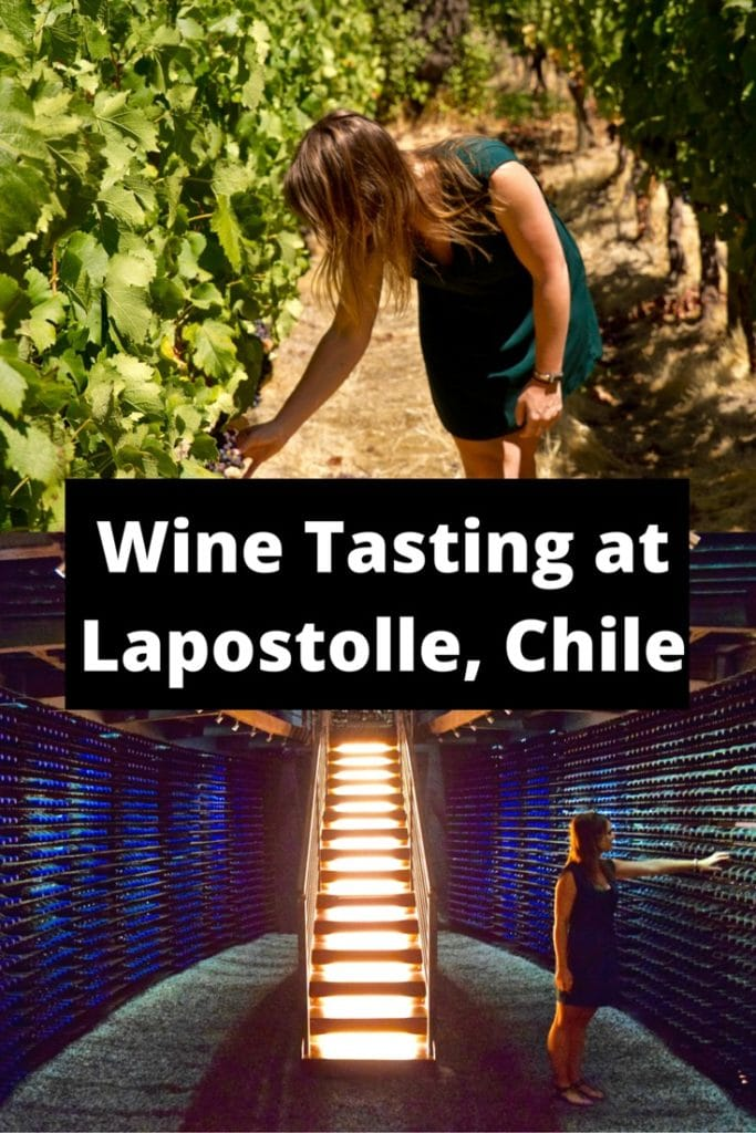 Wine Tasting at Lapostolle, Colchagua Valley, Chile (PIN)