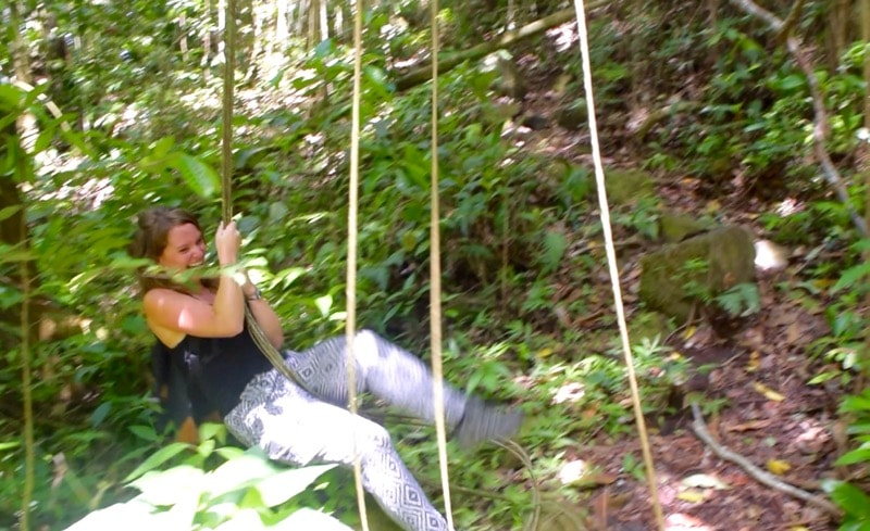 Tarzan swing in the rainforest in St Kitts