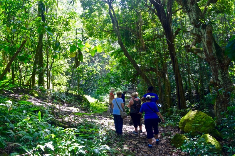 Enjoying O'Neil's Rainforest Tour in St Kitts
