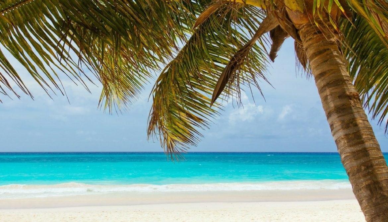 5 Reasons I Miss Playa Del Carmen