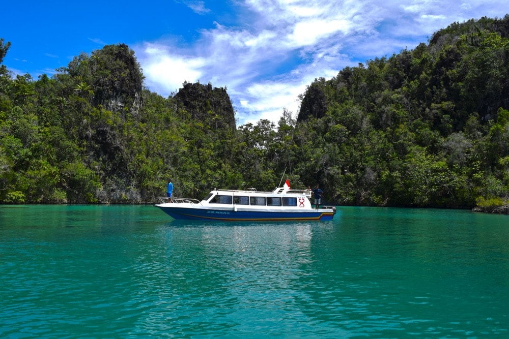 The colour of the water in Piaynemo, Raja Ampat