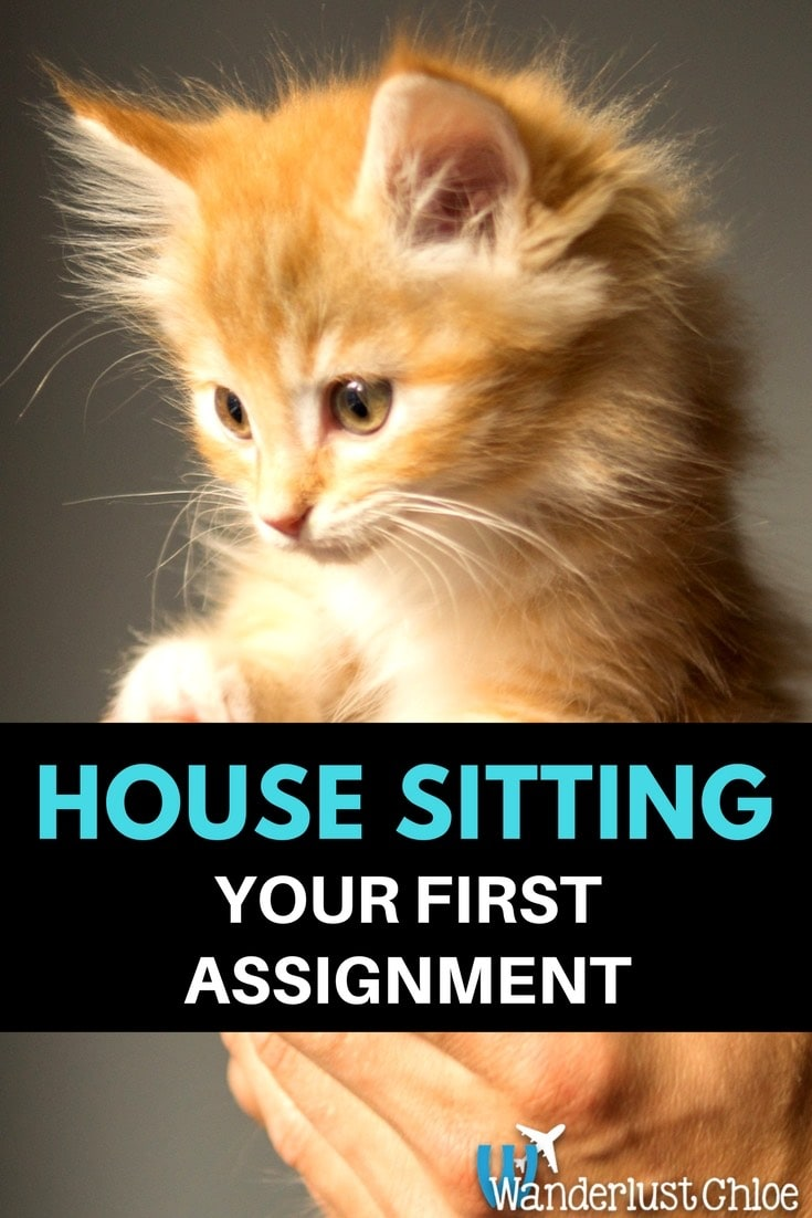 House Sitting - Your First Assignment