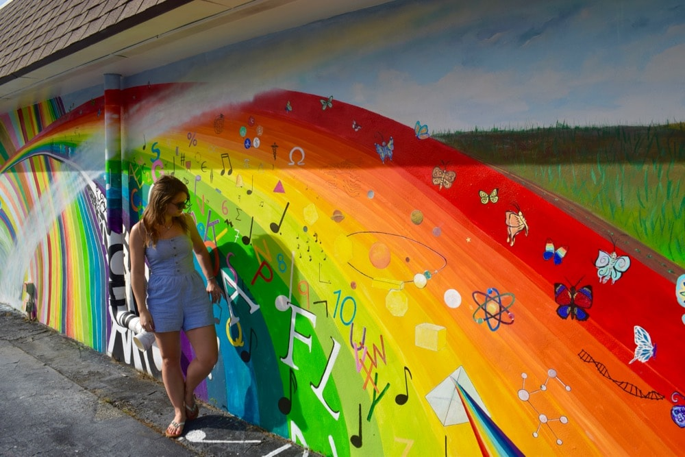 Exploring Hobe Sound's colourful murals