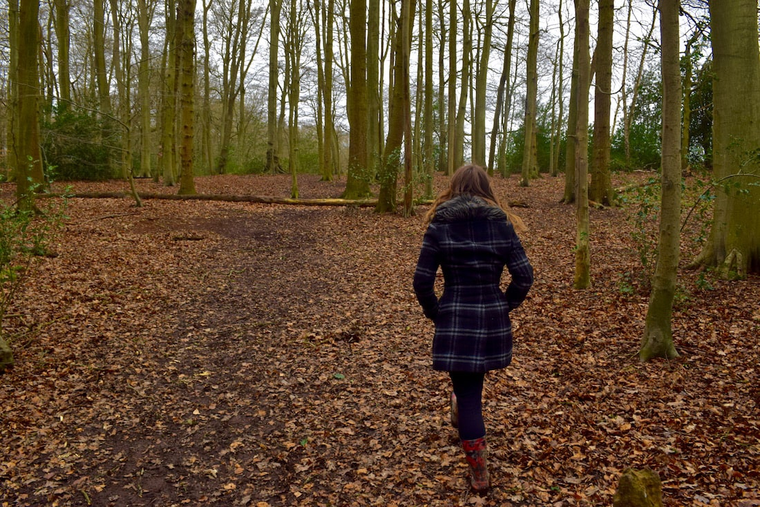 Country Walks In The Chilterns