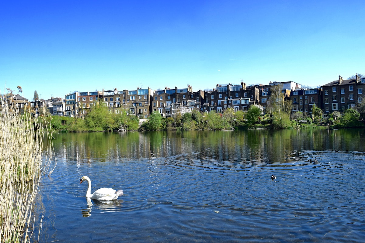 Hampstead London Things To Do Where To Eat And More