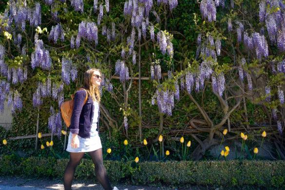 Exploring Mirabell Gardens, Salzburg, Austria