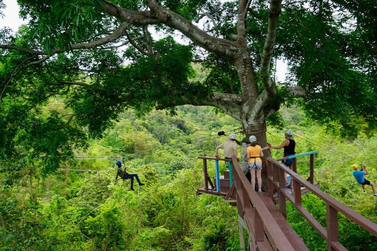 Antigua Rainforest Ziplining Tours