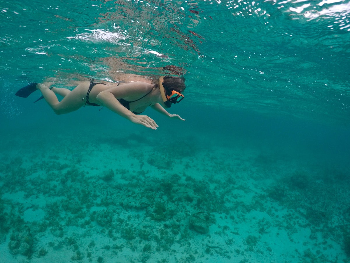 Snorkelling in Antigua, Caribbean