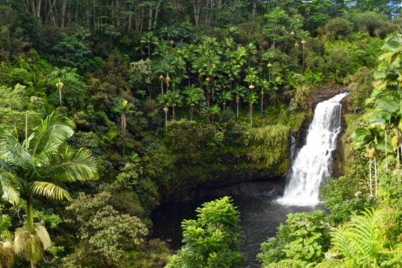 Kulaniapia Falls, Hawaii