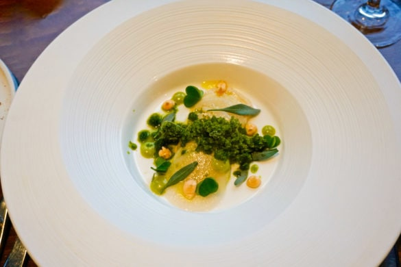 Scallop ceviche with fermented turnip, apple and lovage at Cottage in the Wood