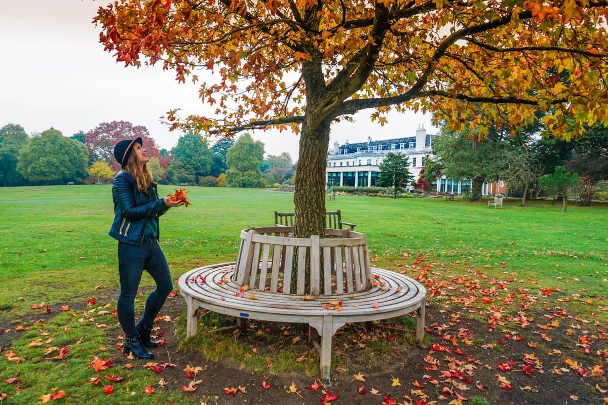 Enjoying Autumn in Cannizaro Park, Wimbledon