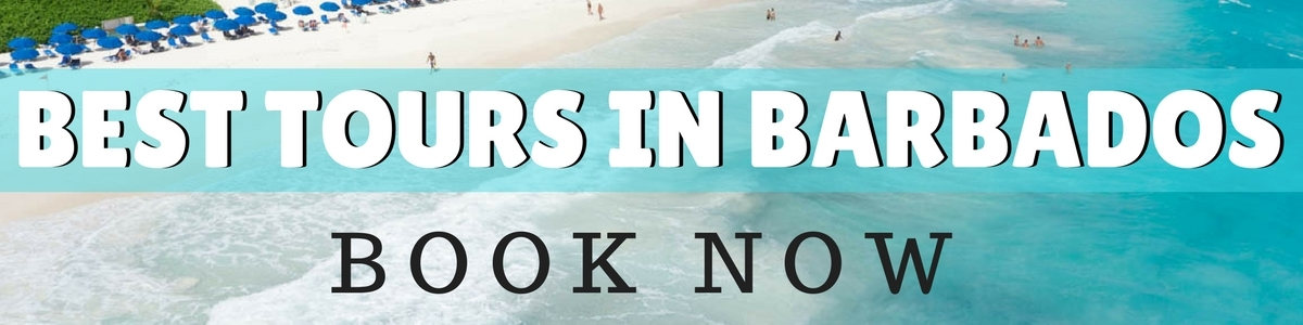 Best Tours In Barbados