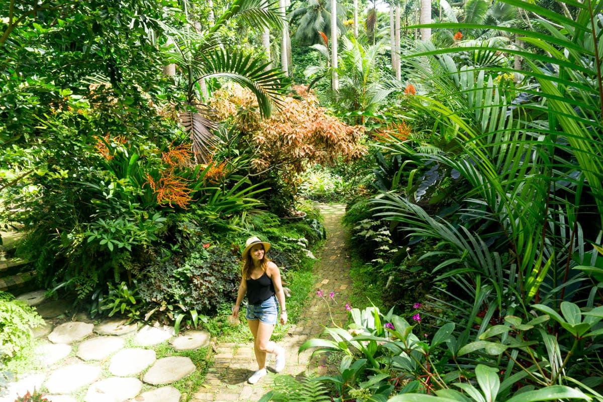 Exploring Hunte's Gardens, Barbados