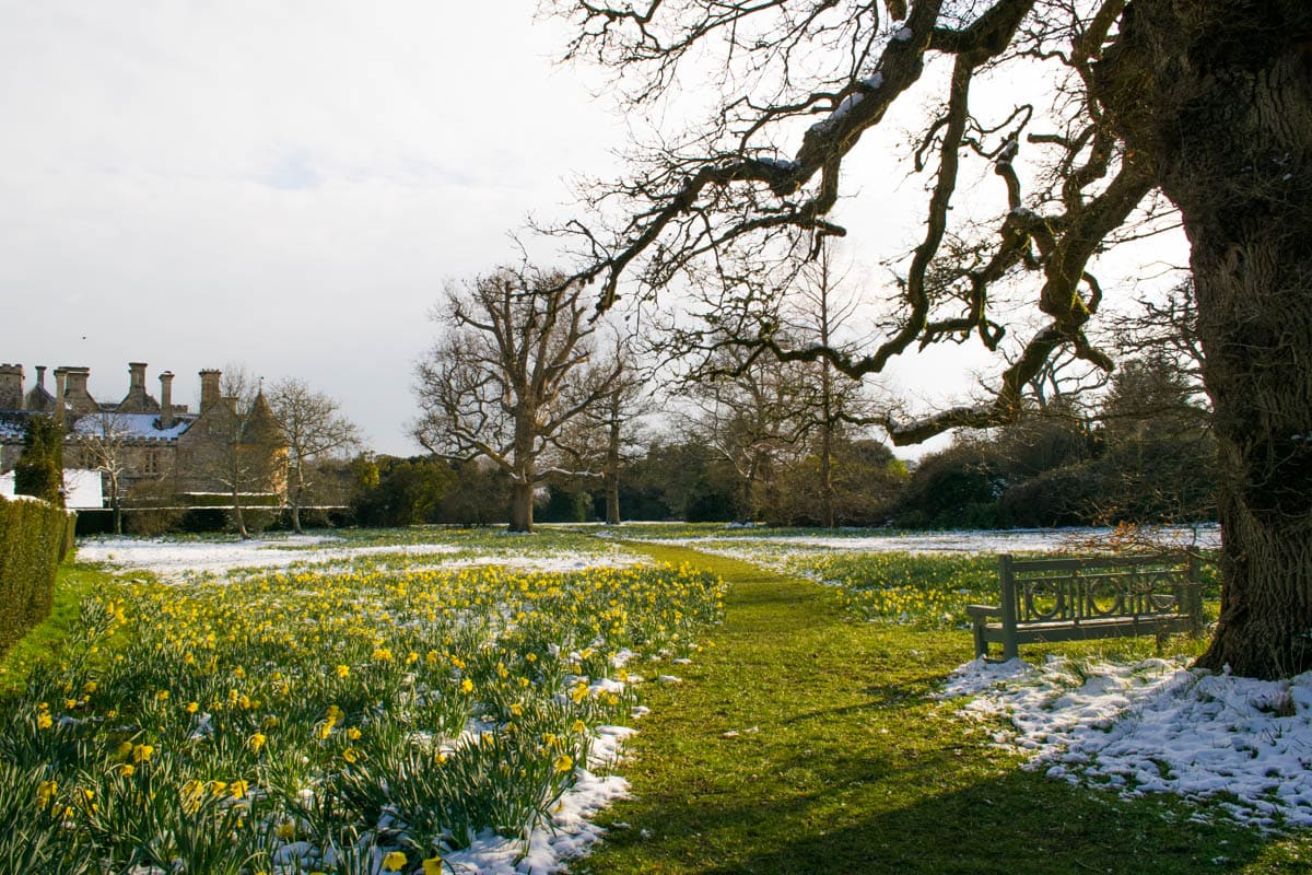 Spring is in the air at Beaulieu Palace House, New Forest