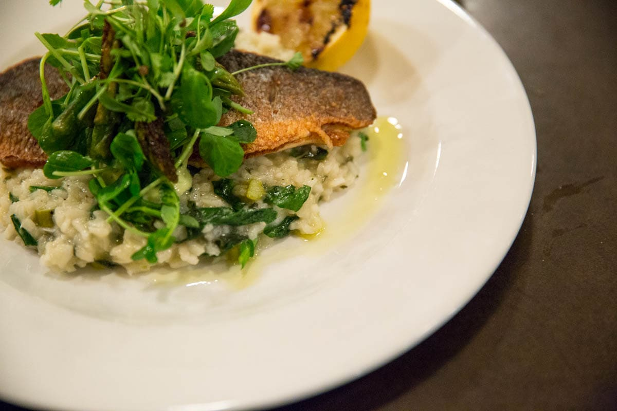 Sea bass at Bush Hall Dining Rooms, Shepherd's Bush, London