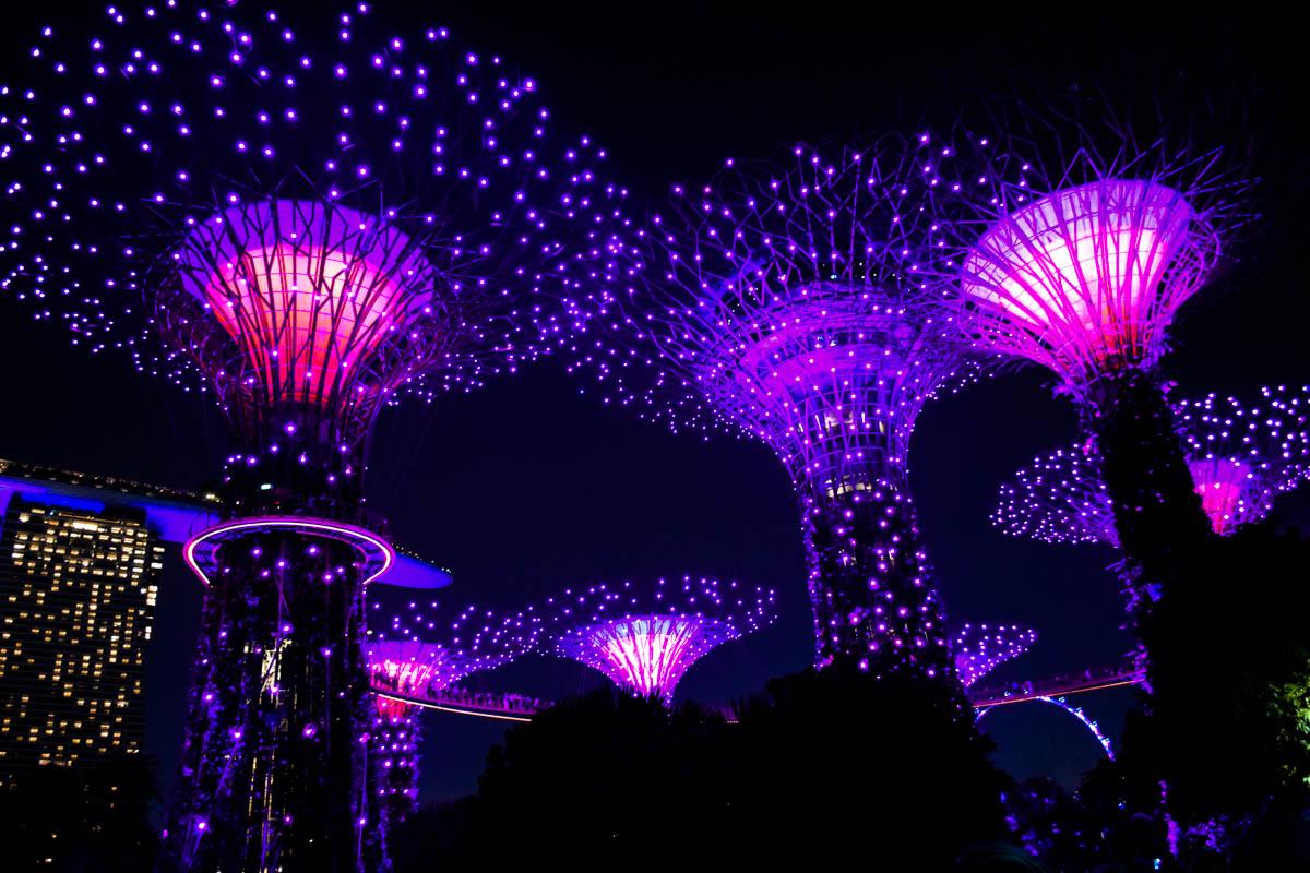 Jardins près de la baie la nuit, Singapour