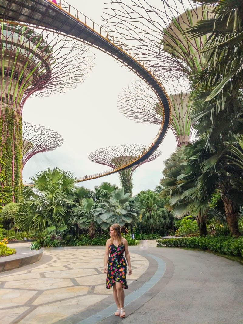Supertrees at Gardens By The Bay, Singapore