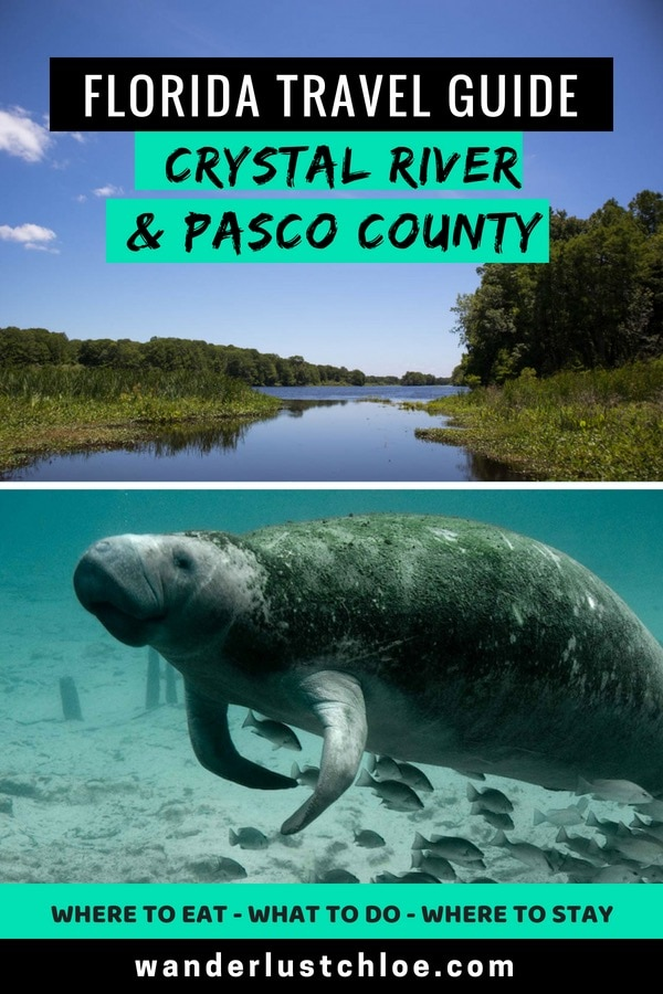 Florida Travel Guide - Crystal River and Pasco County
