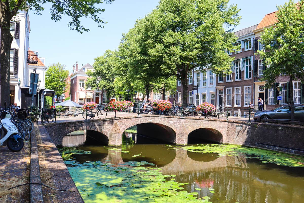 Even The Hague has a few canals!