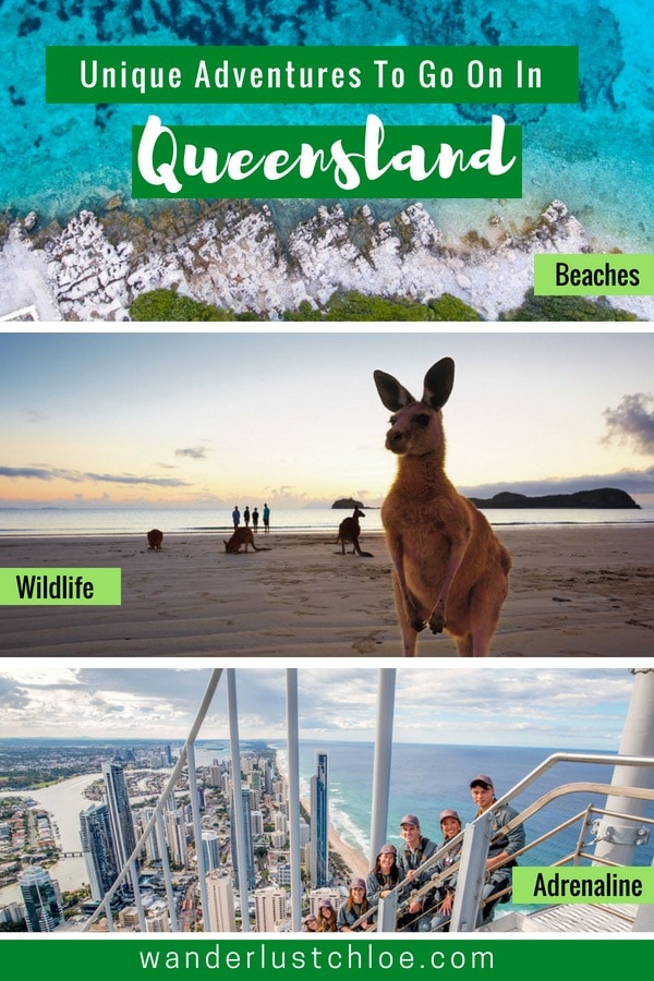 Unique Adventures To Go On In Queensland