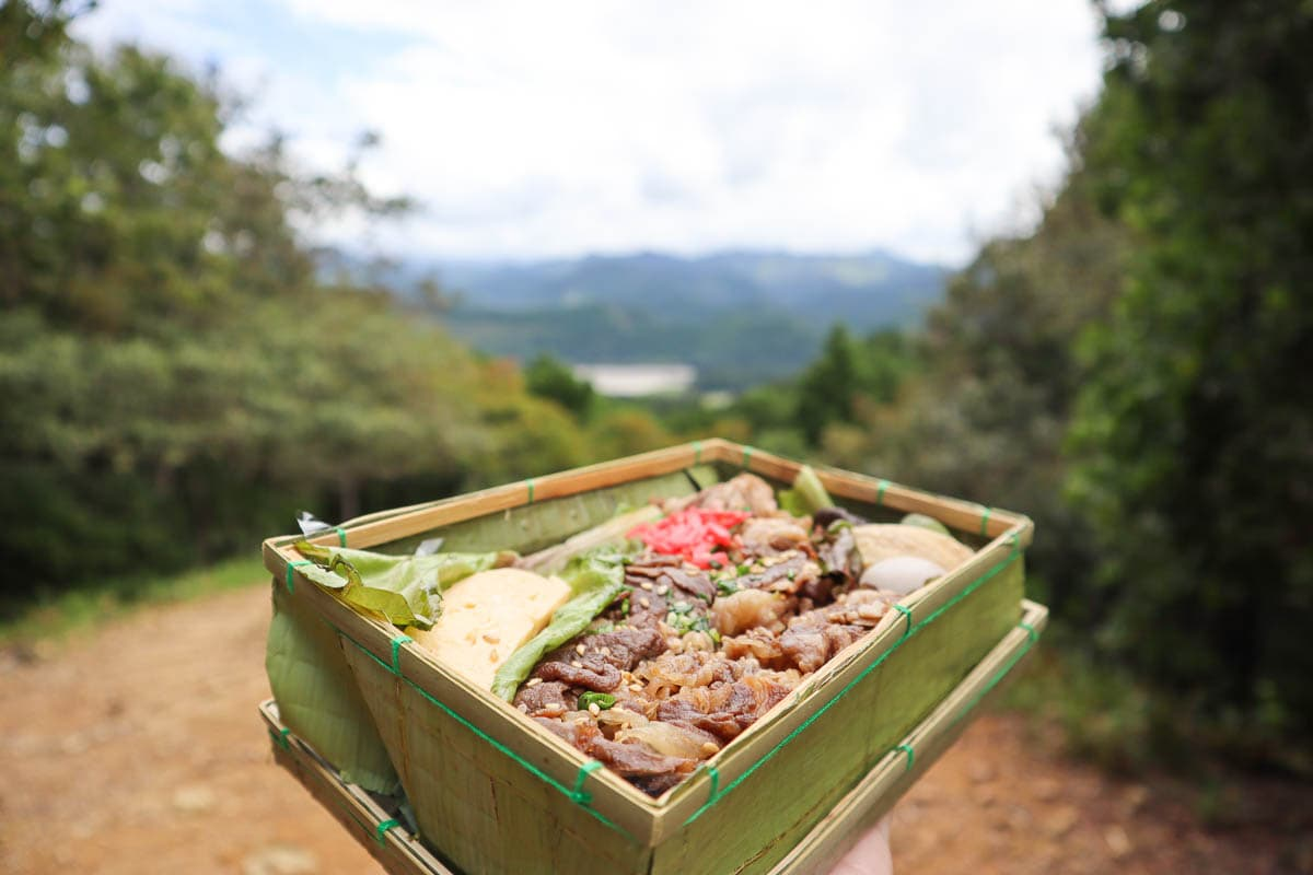 Enjoying a bento box in the mountains on the Kumano Kodo trek, Japan